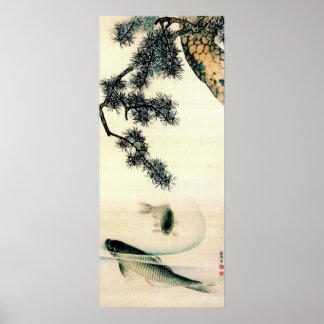 Koi Under Pine Branch 1900 Print