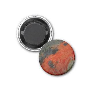 Koi Water Magnet