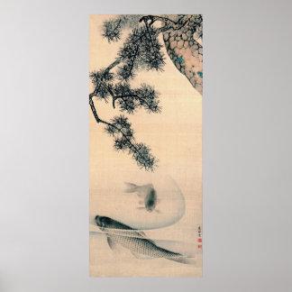 Koi y rama 1790 del pino póster