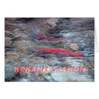 Kokanee Salmon Card