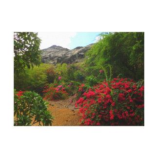 Koko Crater Botanical Garden Canvas Print