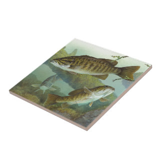 kokuchibasu ceramic tile