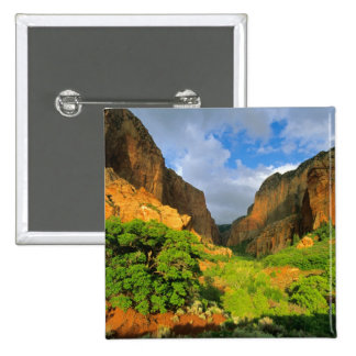 Kolob Canyon at Zion Canyon in Zion National 2 Inch Square Button