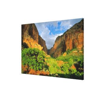 Kolob Canyon at Zion Canyon in Zion National Canvas Print