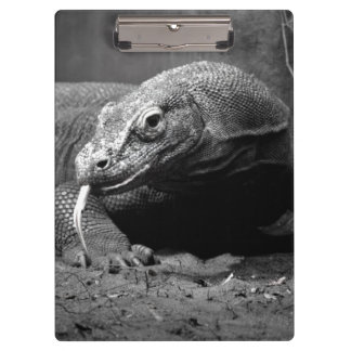 komodo dragon black and white tongue out left clipboard