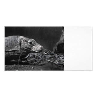 komodo dragon bw looking right personalized photo card