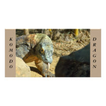Komodo Dragon Card
