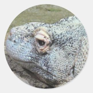 Komodo Dragon Classic Round Sticker