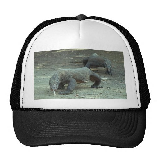Komodo Dragon Hat