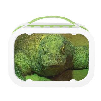 Komodo Dragon Lunch Box