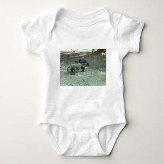 Komodo Dragons Shirt