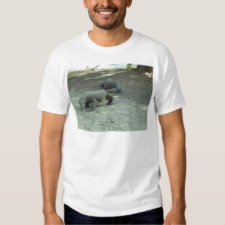 Komodo Dragons T Shirt