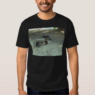 Komodo Dragons Tee Shirt