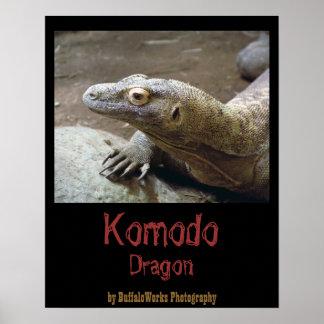 Komodo Profile Poster