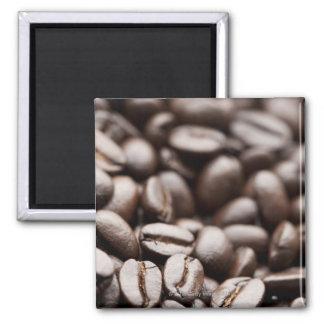 Kona Purple Mountain organic coffee beans Magnet