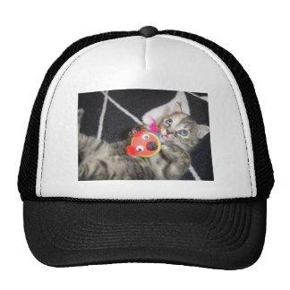 Konfoozled Kitty Trucker Hat