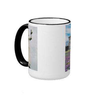 Konstanz objects of interest ringer mug