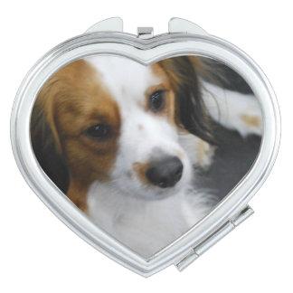 kooikerhondje-3.jpg vanity mirrors