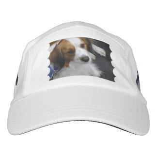 kooikerhondje-3.jpg headsweats hat
