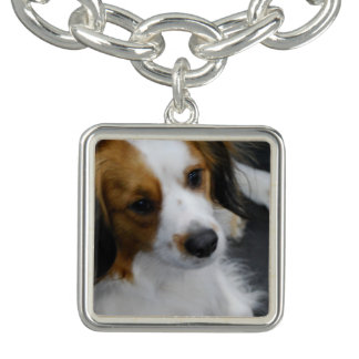 Kooikerhondje Dog Bracelet