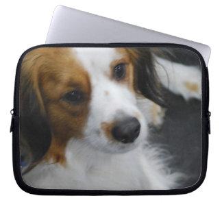 Kooikerhondje Dog Laptop Sleeve