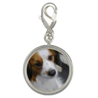 Kooikerhondje Dog Photo Charm