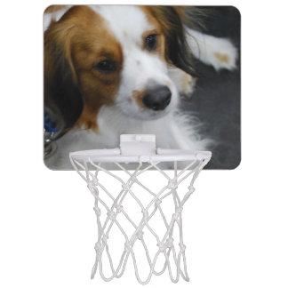 Kooikerhondje Dog Mini Basketball Backboard