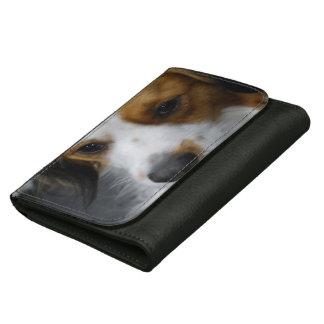 Kooikerhondje Dog Women's Wallet