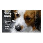 Kooikerhondje  Puppy Business Cards