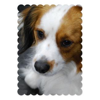 Kooikerhondje Puppy 5x7 Paper Invitation Card