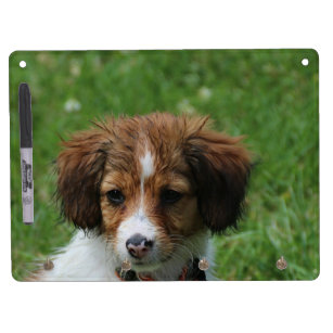 Wet Puppies Office School Products Zazzle