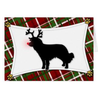 Kooikerhondje Reindeer Christmas Card