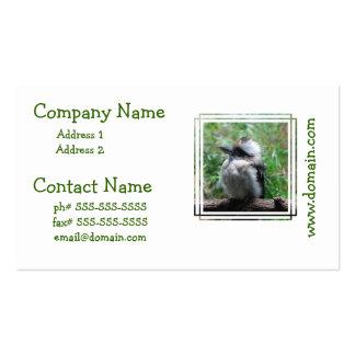 Kookaburra australiano plantilla de tarjeta de negocio