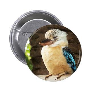 Kookaburra Button