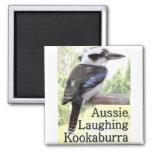 Kookaburra de risa australiano imanes de nevera