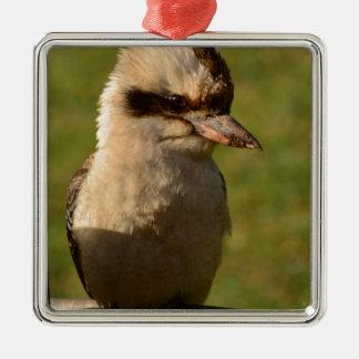 kookaburra adorno cuadrado plateado