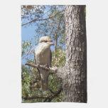 Kookaburra en árbol toallas