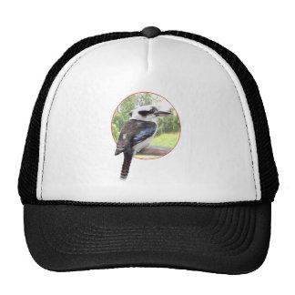 Kookaburra en círculo gorros
