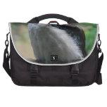 Kookaburra en el roble viejo bolsas para portatil