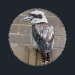 "Kookaburra Jelly Belly Tin<br><div class=""desc"">Jelly Belly Tin featuring a photo of a kookaburra.</div>"