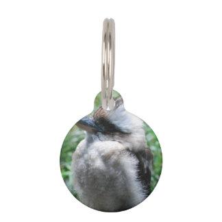 Kookaburra Pet Tags