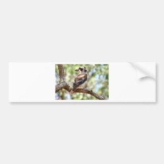 KOOKABURRA RURAL QUEENSLAND AUSTRALIA BUMPER STICKER