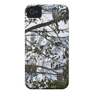 KOOKABURRA & WINDMILL RURAL QUEENSLAND AUSTRALIA iPhone 4 Case-Mate CASE