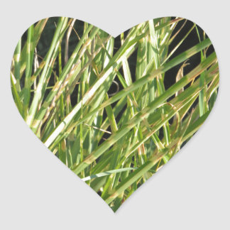 KOOL flowers grass giveaway RETURN GIFTS for party Heart Sticker