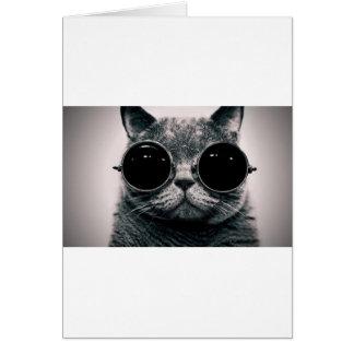 kool fresco kat del gato con las sombras tarjeta de felicitación