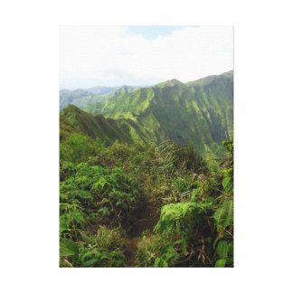Koolau Mountain Trail Canvas Print