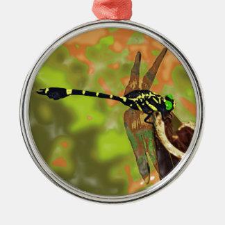kooniyanma dragonfly metal ornament