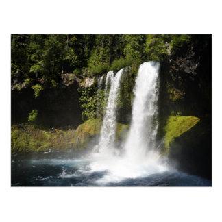 Koosah Falls Postcard