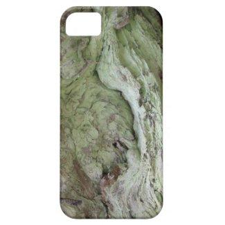 Kooskooskia Idaho Flora Fungi Moss Botany Lichen iPhone 5 Cases