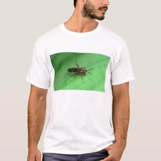Kooskooskia Idaho Insects Arachnids Spiders T-Shirt